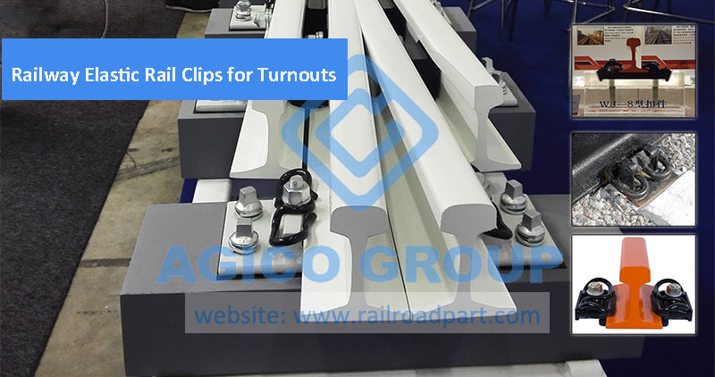 Railway Elastic Rail Clips for Turnouts